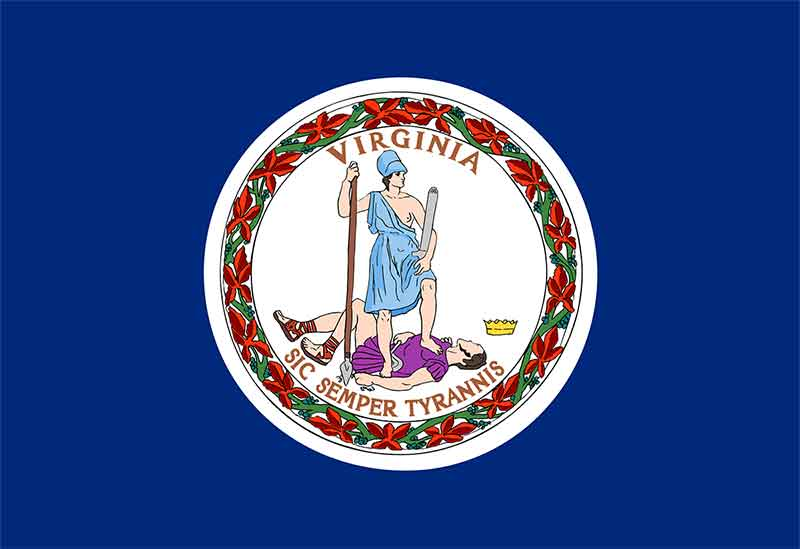 Virginia State Flag | TTR Data Recovery