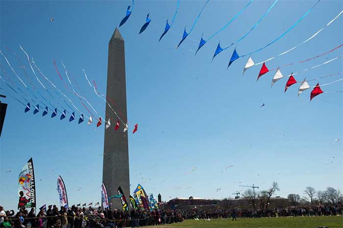 Festivals In Washington Dc | TTR Data Recovery