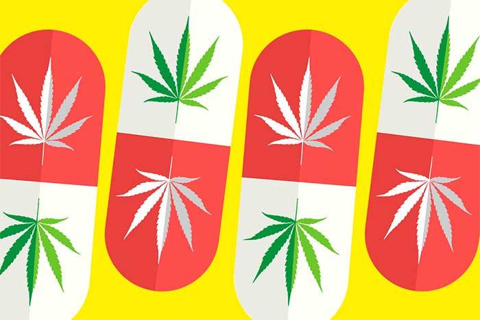 Medical Marijuana In Orlando