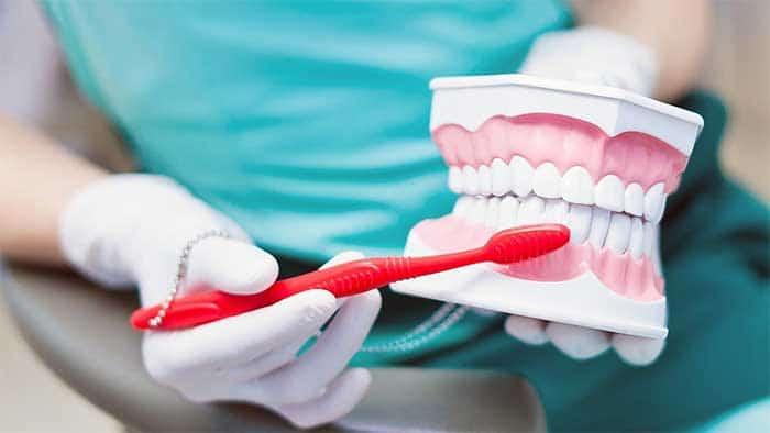 Dentist Virginia